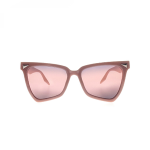 UV Plastic Fashionable Sunglasses With Logo Bulk Trendy LS-P1355